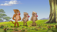 The-traveling-baboon-show (367)