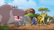 Follow-that-hippo (100)