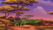 Let-sleeping-crocs-lie (329)