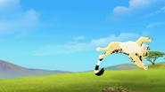 The-imaginary-okapi (437)