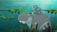 Follow-that-hippo (347)