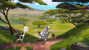 Follow-that-hippo (231)