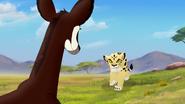 The-imaginary-okapi (357)
