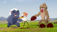 The-traveling-baboon-show (132)