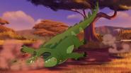 Let-sleeping-crocs-lie (356)