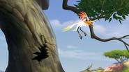 Ono-the-tickbird (49)