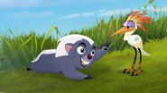 Follow-that-hippo (237)