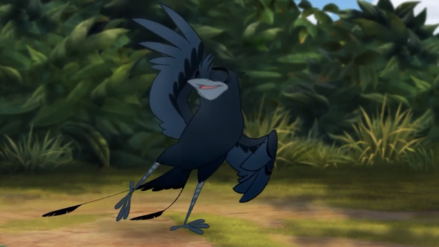 File:The-call-of-the-drongo (217).png
