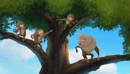 Baboons (150)