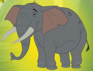 Elephant-p