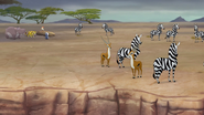 The-mbali-fields-migration (323)