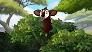 The-imaginary-okapi (49)