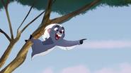 Ono-the-tickbird (212)