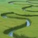 Floodplains-profile