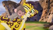 Baboons (464)
