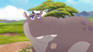 The-imaginary-okapi (63)