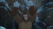 The-lost-gorillas (474)