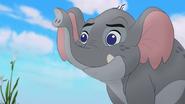 Follow-that-hippo (217)