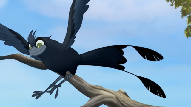 File:The-call-of-the-drongo (270).png