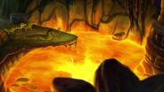 Let-sleeping-crocs-lie (421)