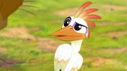 Ono-the-tickbird (132)