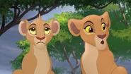 Baboons (61)