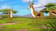 The-imaginary-okapi (173)