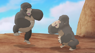 The-lost-gorillas (151)