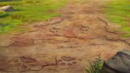 The-imaginary-okapi (256)