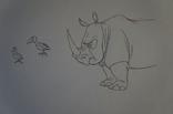 RhinoConsZ