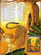 Leopardbaboon2