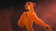 Lion-king2-disneyscreencaps.com-2754