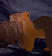 LionessesandNala