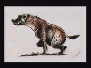 Concept hyena007