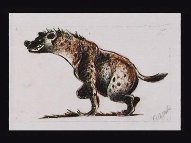 File:Concept hyena007.jpg