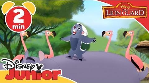 The Lion Guard It's UnBungalievable Who's A Better Flyer? Disney Junior UK