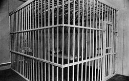 Cage close
