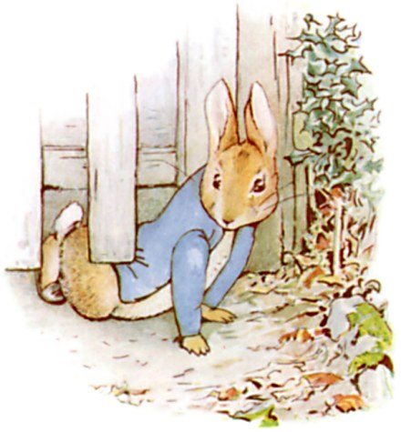 The Tale of Peter Rabbit | Literawiki | Fandom powered by Wikia