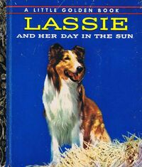 Lassie and Her Day In the Sun