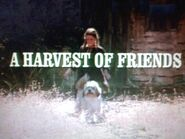 Title.harvest of friends2