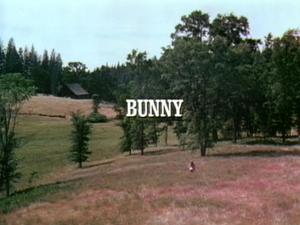 File:Title.bunny.jpg