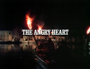 Title.theangryheart