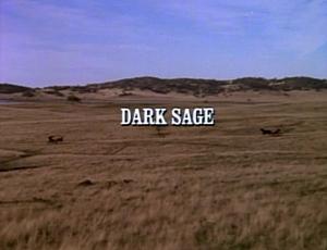 Title.darksage