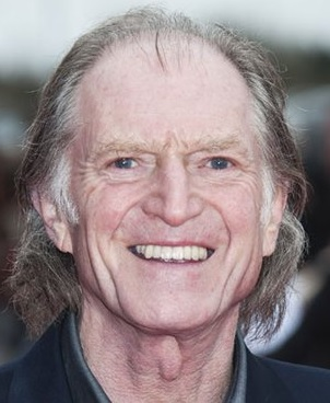 david bradley interview