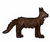 Brambleclaw2 long male