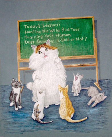File:Teaching cat.jpg