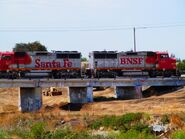 BNSF GP60M's