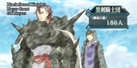 Black Sword Knights