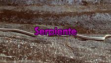 Serpiente Main Title