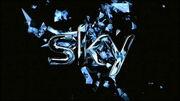 Sky1LogoIdent2008